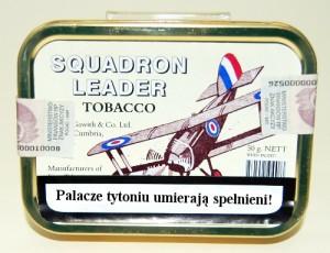Squadron Leader – raport z misji zwiadowczej