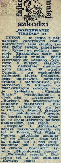 Tuzin Zbigniewa Turka (16)