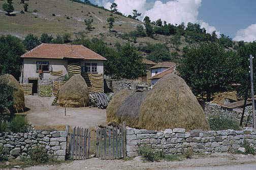 Bałkańskie gospodarstwo
